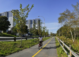 Active Transportation Trail